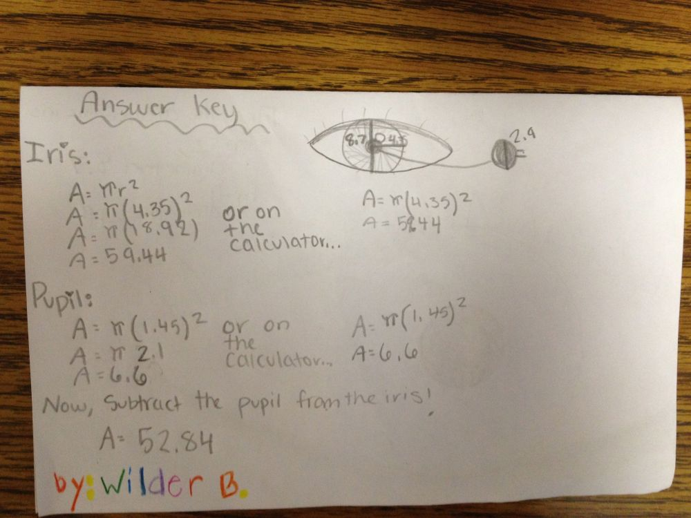 Student Created Math Hunt of Area of Irregular Shapes: CCSS 6.G.1 (6/6)
